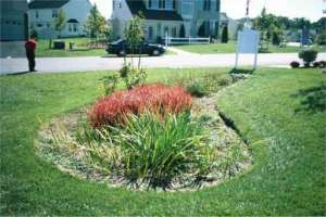 Rain Garden Design water sensitive urban design rain gardens design details 1933x1213 in This Page Lists Some Of The Fundamental Factors You Should Consider When Designing A Rain Garden For A Housing Development These Facts Can Guide You When M